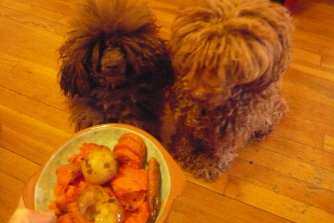 There's no tricking us. We know veggies when we sniff'em..